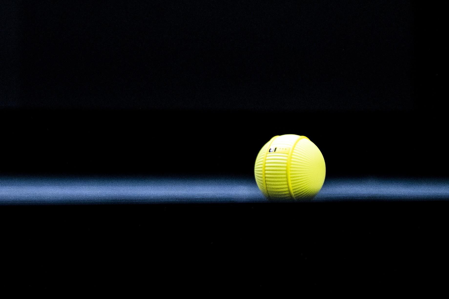 Piłka zajmująca się domem i robot przynoszący rolkę. Nowinki z Las Vegas